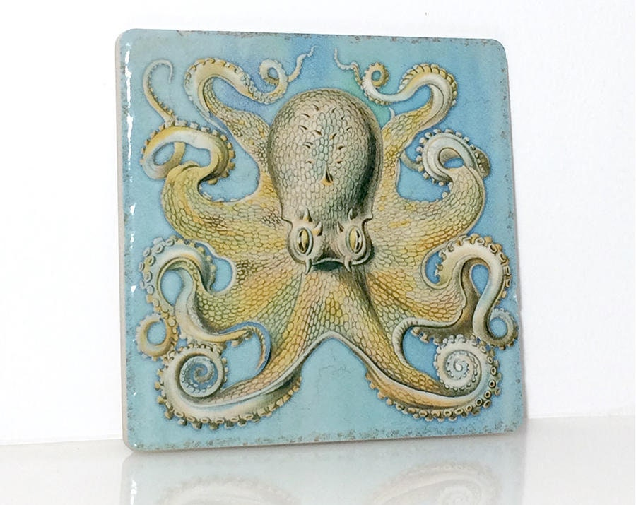 Octopus Stone Tile, Trivet Coaster Kitchen Backsplash Decorative Counter  Art Tile, Nautical Beach Cottage Decor, Sea Animal, Ernst Haeckel