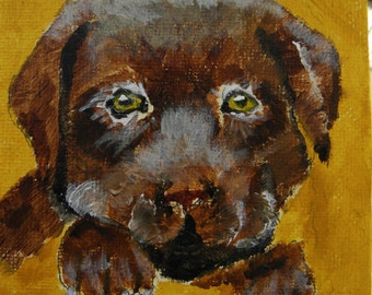 Chocolate Lab - Original Art
