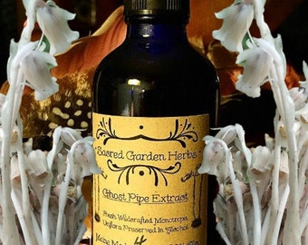 Ghost Pipe Tincture (Wildcrafted Indian Pipe)