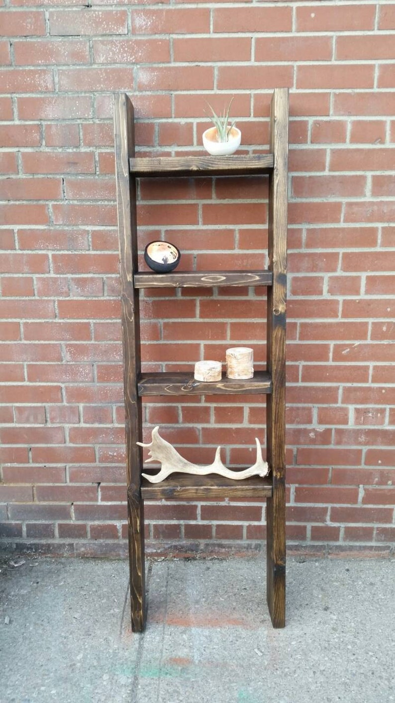 Amazing Rustic Wood Ladder Shelf Freestanding Rustic Ladder Bookcase Shelf Home Interior And Landscaping Synyenasavecom