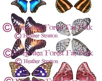 Assorted Printable butterfly wings