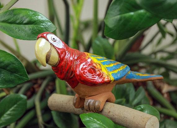 perroquet datant dates de branchement