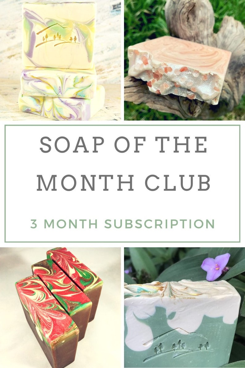 Bath Subscription Box Monthly Subscription Box Cold Process Soap Natural Soap Artisan Soap Homemade Soap Gift For Her 3 Month