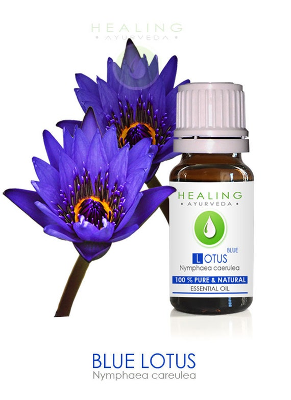 Natural Blue Lotus (Nymphaea caerulea), 100% Blue Lotus (LILY)- Sacred Louts Oil- (Undiluted)-Pure Lotus flower essential oil