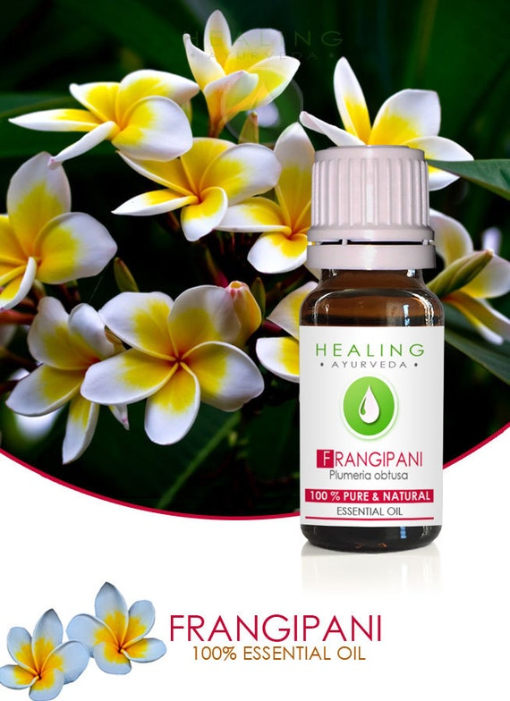 Frangipani essential oil- Pure natural esssential oil- 100% Frangipani flower oil- Plumeria oil- Natural  bath & beauty oil-Spa-Ayurveda oil