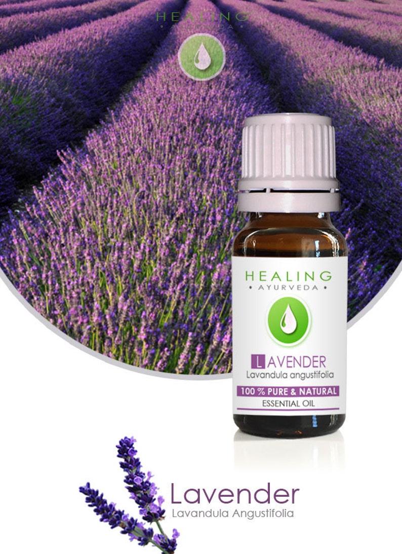 Lavender oil 100% pure essential oil Lavender flower oil image 0
