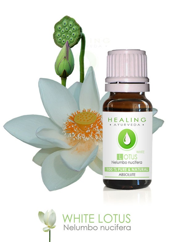 White Lotus Absolute- Pure Lotus Natural flower oil-Nelumbo nucifera-Sacred Louts Oil-Spiritual oil- Undiluted Absolute - Natural Lotus oil