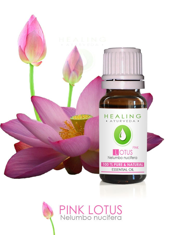 Pink Lotus 100 Pure Lotus Flower Essential Oil Nelumbo Nucifera