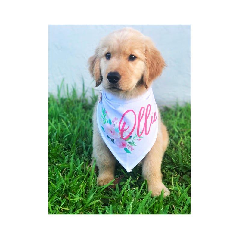 Dog Bandana Custom Dog Bandana Personalized Dog Bandana Dog Gift Dog Collar Dog Tag Dog Lover Gift Dog Person Gift Bandana Pet Gift