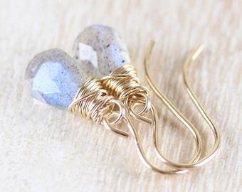 Labradorite & 18Kt Gold Filled Earrings. Dainty Drop Earrings. Delicate Blue Flash Gemstone Dangle Earrings. Wire Wrapped Jewelry For Women