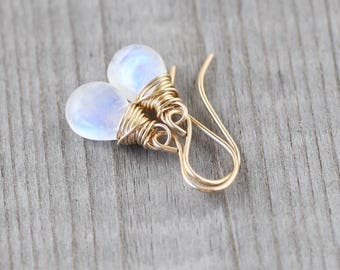 Rainbow Moonstone & 18Kt Gold Filled Earrings. AAA Blue Flash Gemstone Small Dangle Earrings. Dainty Wire Wrapped Drop Earrings for Women