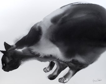Curious - watercolor painting