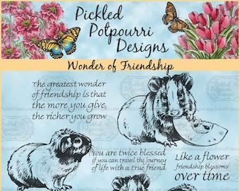 Wonder of Friendship Digital Stamp Download