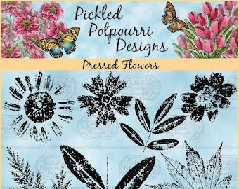 Pressed Flowers Digital Stamp Download