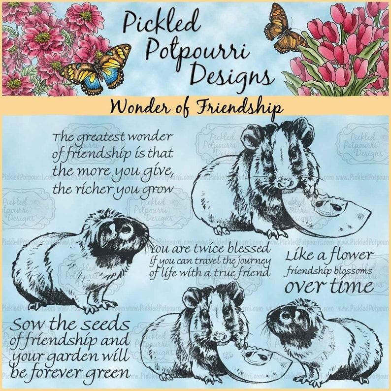 Wonder of Friendship Digital Stamp Download image 0