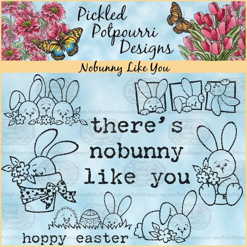 Nobunny Like You Digital Stamp Download image 0