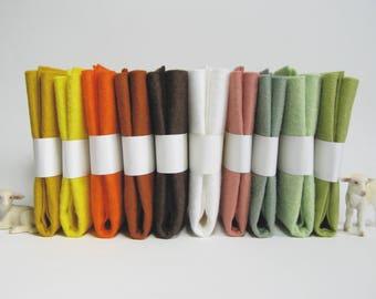"10 Piece Variety Pack of Wool Blend Felt Sheets 22.8cm x 30.4cm (9"" x 12"")"