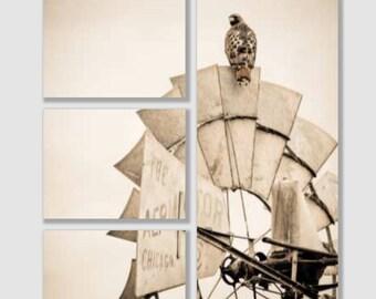 Farmhouse wall art canvas of a hawk on a windmill, western art, wildlife photo, farmhouse wall decor, western wall decor, canvas split