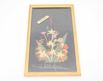 French vintage dried flower art signed framed natural botanical pressed flowers Edelweiss fine gold frame vertical hanging for the wall 70s