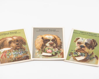 CHOCOLAT POULAIN French vintage trade cards dog portraits kitsch scrapbooking craft supply publicity advertising memorabilia collectible x 3