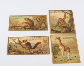 CHOCOLAT POULAIN French vintage trade cards animalier kitsch scrapbooking craft supply publicity advertising memorabilia collectible x 4
