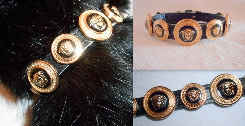 6875339ad0a Versace Gold Medusa Head Studded Designer Collar.Small puppy