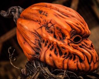Pumpkin mask, Halloween mask, Creeper on the patch, pumpkin, Scarecrow mask