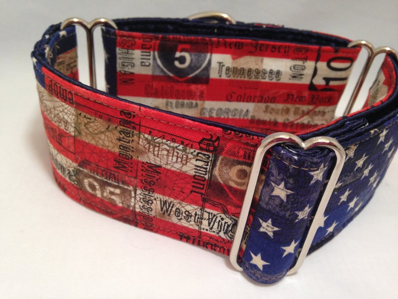 Greyhound Dog Martingale Collar 2 inch Martingale Collar USA Flag /& State Names Themed Patriotic Fourth of July Martingale Collar