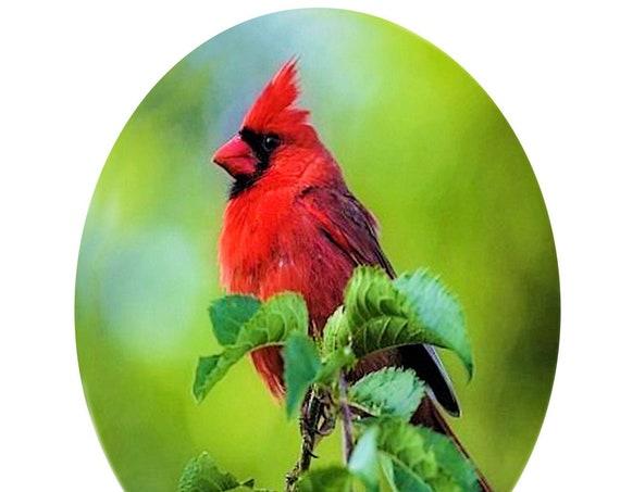 Memorial Suncatcher - sm Cardinal - Red Bird