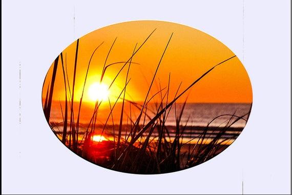 Glass Suncatcher -lg OOB Grass