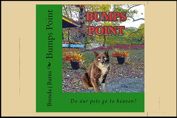 Book - BUMP'S POINT - Children