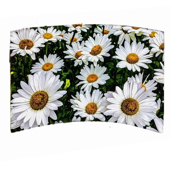 "Acrylic Photo Panel -  8""x 10"" Daisies"
