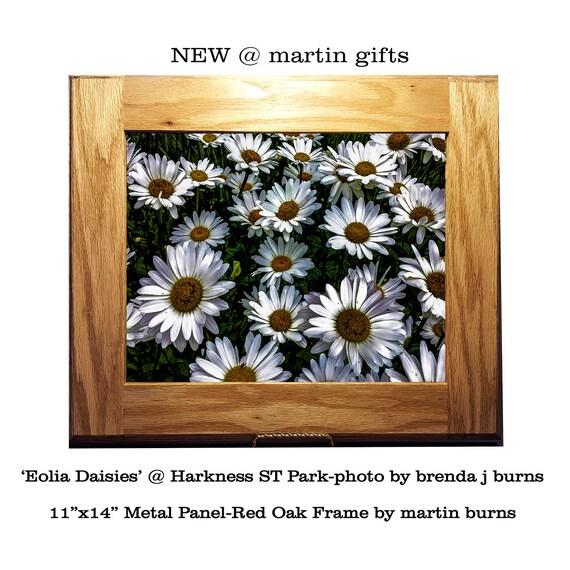 Photo Print on Metal - Framed Daisies