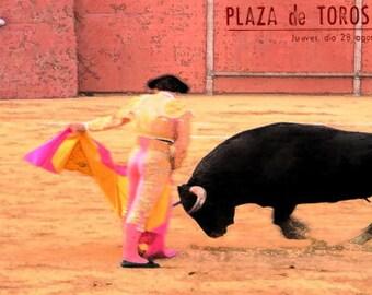 """Plaza De Toros #27 Toreo Collection 12/"""" x 24/"""" Giclée Canvas Art Bullfighting"""