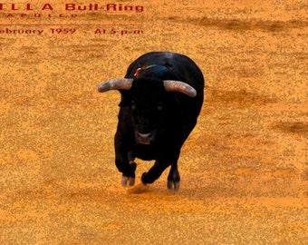 """Bullfighting Toreo Collection 12/"""" x 24/"""" Giclée Canvas Art Plaza De Toros #26"""