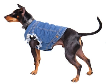 Denim Dog Jacket / Denim Dog Vest /Dog Coat / Dog Denim /  Dog Vest / Denim Vest for Large Dog / Heavy Metal Dog / Large dog coat