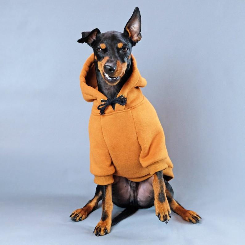 Tan Coloured Dog Sweatshirt | Stay at Home Mum