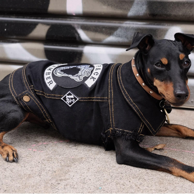 Black Denim Dog Jacket - Pack Member Jacket /  Denim Dog Jacket Member / Denim Dog Vest / Dog Jacket  / Dog Vest / Dog Denim 2e88d7