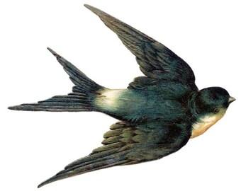 Swallow - temporary tattoo