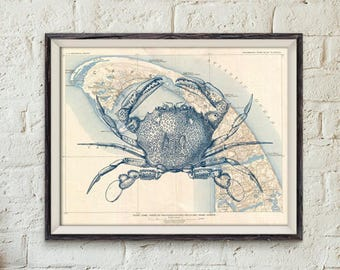 Instant Download Printable 11×14 Cape Cod Old Map Crab Seafood A3 Nautical Maritime Beach Cottage Wall Art Print DIGITAL DOWNLOAD HQ300dpi
