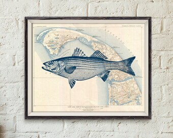 Instant Download Printable 11×14 Cape Cod Old Map Stripped Bass A3 Nautical Maritime Beach Cottage Wall Art Print DIGITAL DOWNLOAD HQ300dpi