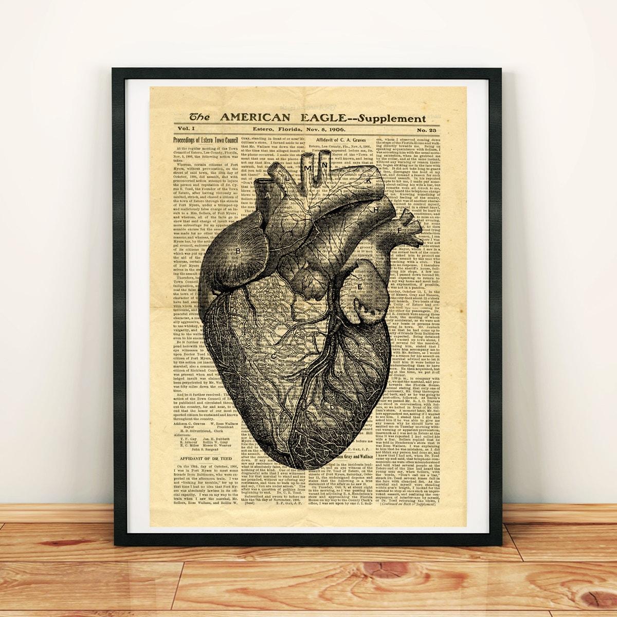 Humano corazón anatomía Ciencia Medicina antigua anatomía | Etsy