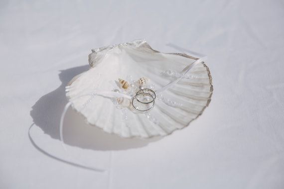 Pretty as a shell ring holder