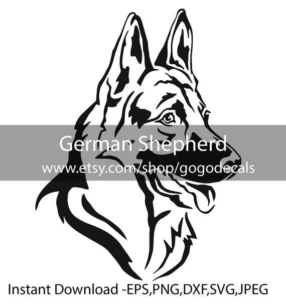 German Shepherd Head eps png jpeg svg Artwork digital download