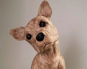 The Boston Terrier - Sampson
