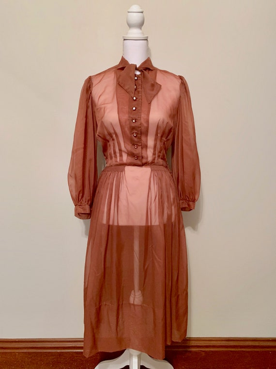 Vintage Brown Sheer Long Sleeve Rhinestone Button