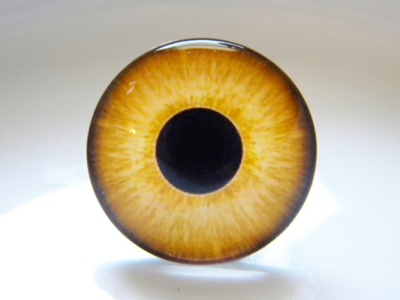 Pair of 20mm Realistic Yellow Owl Glass Eyes for Jewelry Taxidermy Doll Making