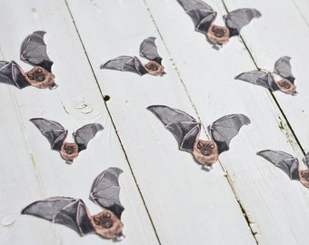 Flying Bat Party Cutouts, Bat Die Cuts, Bat Party Punchies, Bat Craft Ephemera, Halloween Table Decoration, Halloween Die cuts