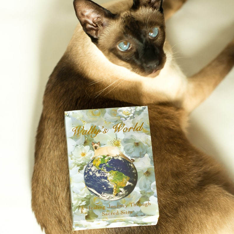 Wally's World Oracle: A Healing Journey Through Sacred image 0