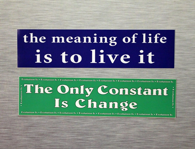 The Meaning Of Life Is To Live It OR The Only Constant Is Change Bumper  Sticker